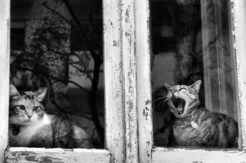 Take me off! by Rui Palha