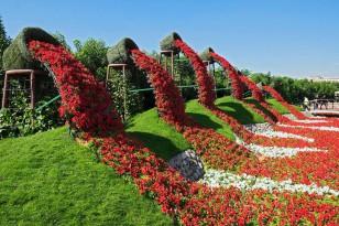 迪拜的世界最大花园