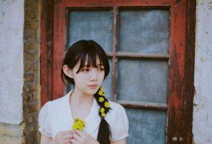 雏菊清新唯美写真