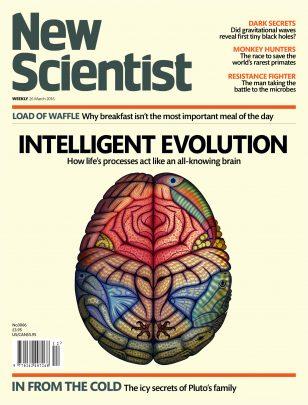 Intelligent Evolution 1