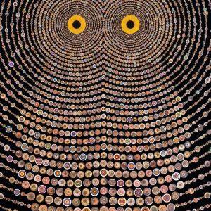 美国艺术家 Fred Tomaselli 作品
