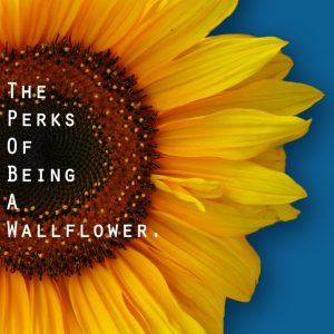 The Perks of Being a Wallflower - 《壁花少年》电影海报