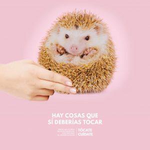 Touch Yourself - 预防乳腺癌公益广告:乳腺癌可以通过触摸发现,68%的女性因为没有自我探索而错失发现机会