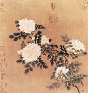 白蔷薇图 马远