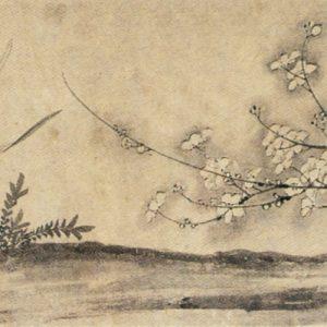 梅花水仙图 佚名