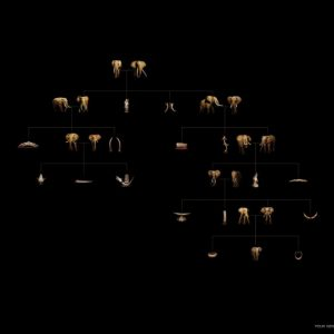 世界自然基金会 | World Wildlife Fund (WWF) | 奥美 | Ogilvy | Family Tree
