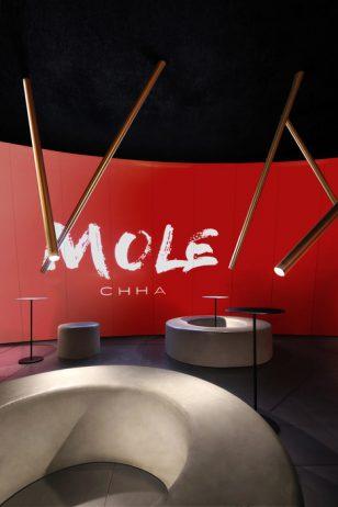 MOLE CHHA (中国佛山)