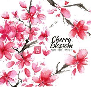 美丽盛开的红色樱花矢量素材