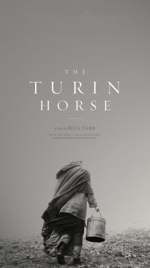 The Turin Horse - 《都灵之马》电影海报