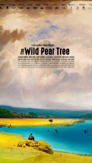The Wild Pear Tree - 《野梨树》电影海报