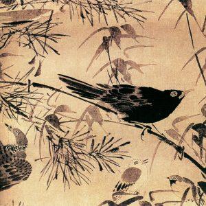 灌木集禽图 林良