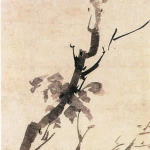 《古槎鹳鹆图》又名《春雨鸣禽图》 唐寅