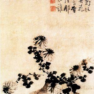《歪瓶依菊图》 边寿民