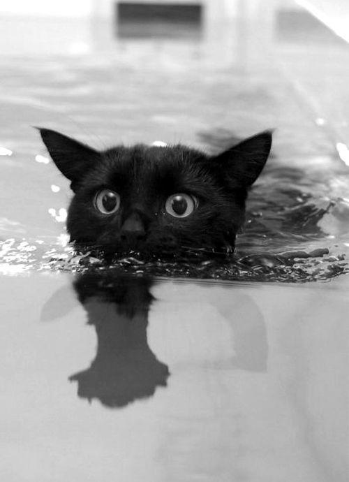 水里摄影系列