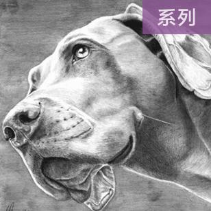 32张精美的狗狗绘画作品精选