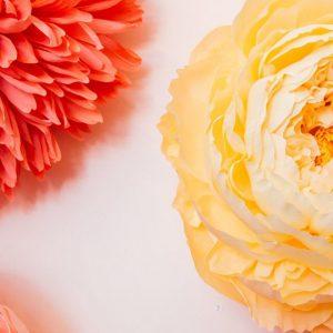 Giant Flowers - Tiffanie Turner 花朵纸艺作品