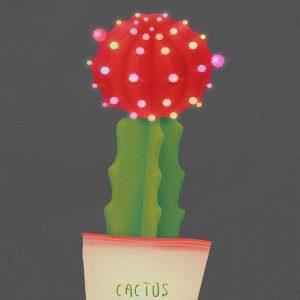 Cactus - 韩国插画师 Soh 多肉植物系列插画