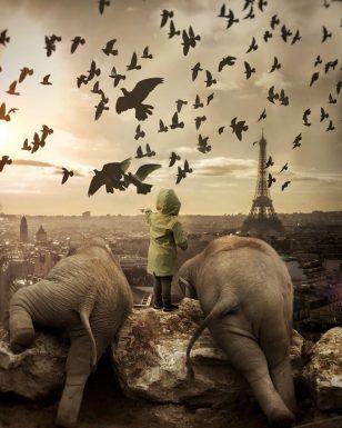 童话里的世界