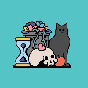 Time succulent cat