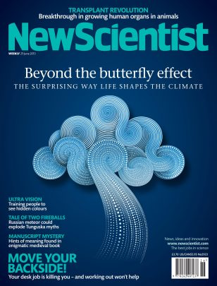 Beyond The Butterfly Effect / New Scientist