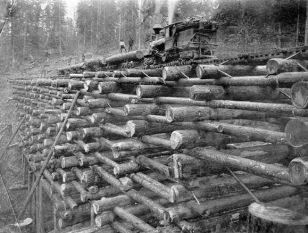 20世纪初,美国俄勒冈州的铁路桥