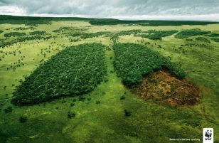 世界自然基金会 | World Wildlife Fund (WWF) | 腾迈 | TBWA | Lungs