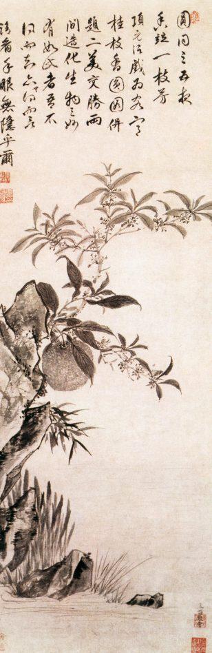 桂枝香园图 项元汴