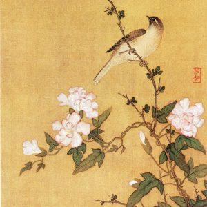 花卉草虫图(之二) 马荃