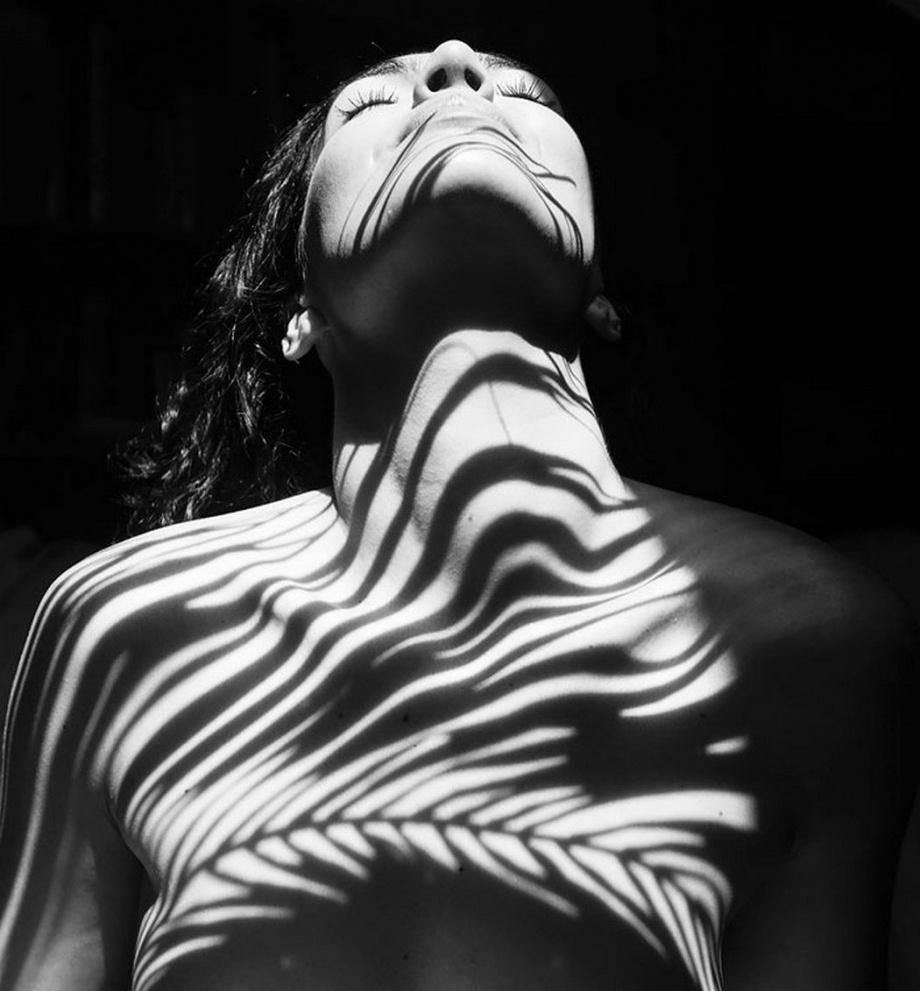 树影|摄影师 Emilio Jiménez