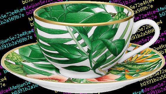 Hermès-现代Passifolia茶杯与杯碟茶具