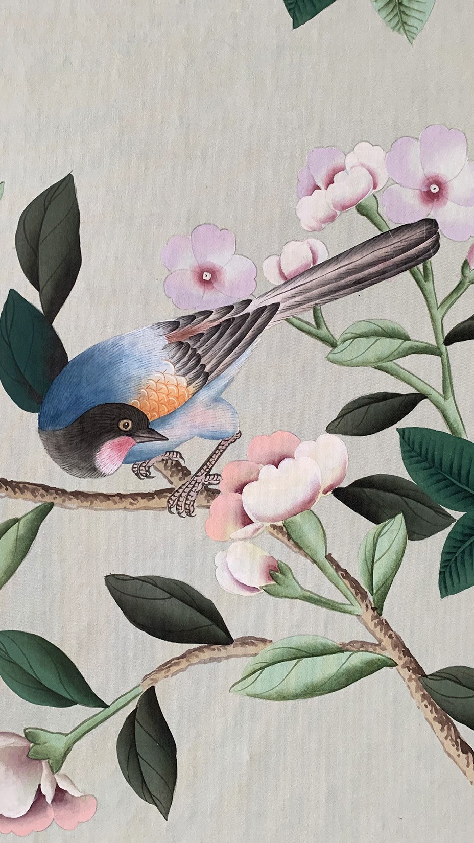 Wallpapers de Gournay - 英国 de Gournay 品牌花鸟系列
