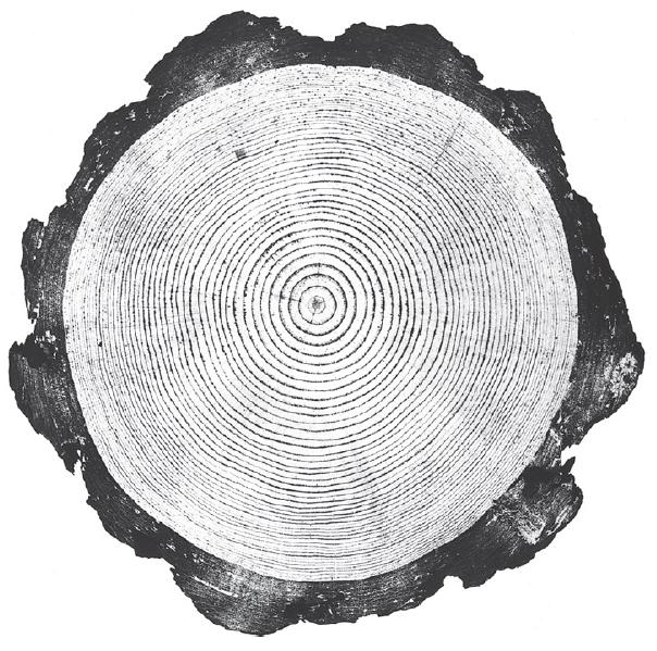 木 · Wood